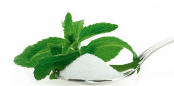 The stevia story